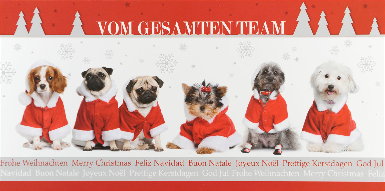 weihnachtskarte frohe weihnachten vom gesamten team hunde. Black Bedroom Furniture Sets. Home Design Ideas