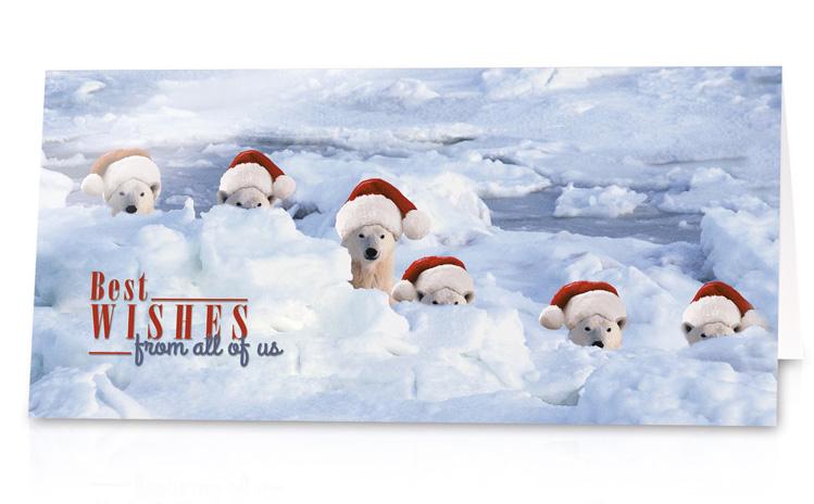 lustige weihnachtskarte mit eisb ren mit weihnachtsm tzen. Black Bedroom Furniture Sets. Home Design Ideas
