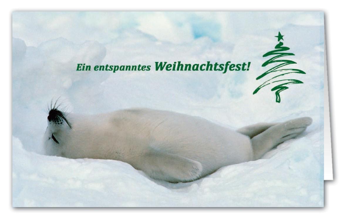 Tierische Weihnachtsgrüße.Tierische Weihnachtskarte Coole Robbe Mit Spende Zugunsten ärzte